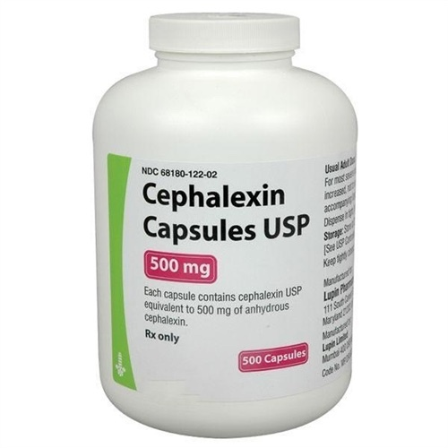 Cephalexin buy shop